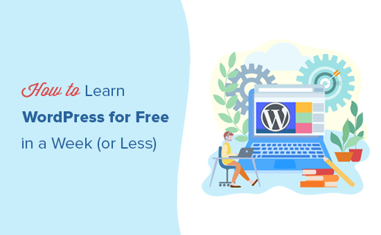 How to easily learn WordPress for free in one week