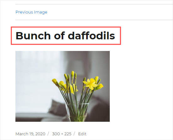 Viewing the image's attachment page, with the image title shown