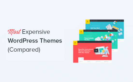 Most expensive WordPress themes compared