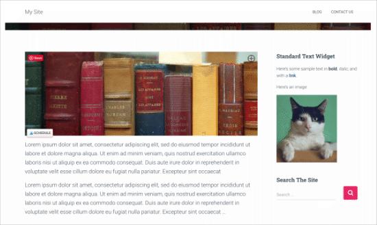 Standard widget on your site