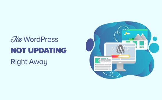 Fixing a WordPress website not updating right away