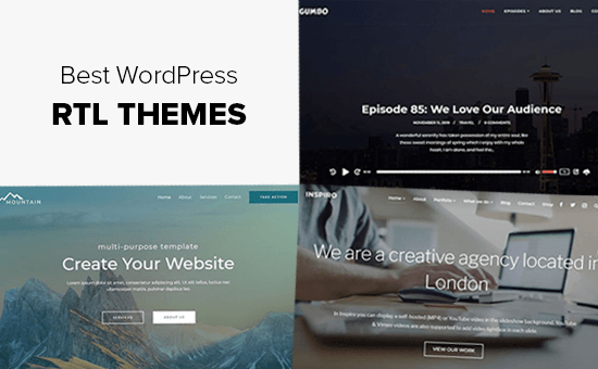 Best RTL WordPress Themes (Right to Left Language Support)