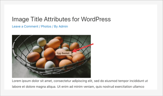 Image title attribute popup