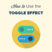 How to Show and Hide Text in WordPress Posts with the Toggle Effect