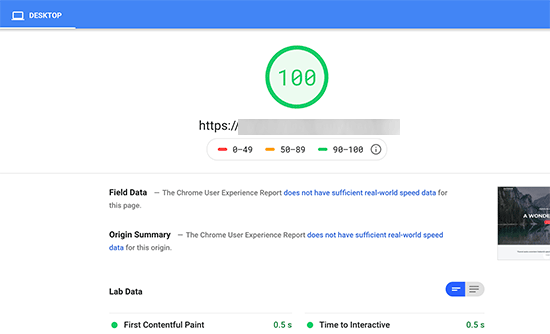 Fixed render-blocking issue to achieve perfect page speed score