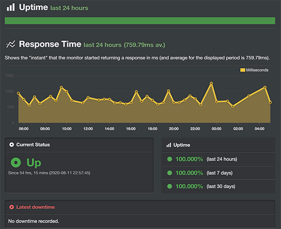 Bluehost uptime monitoring test result