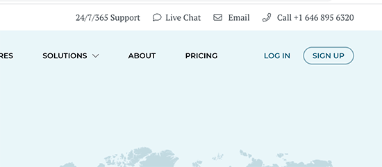 Rocket.net support options