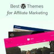 23 Best WordPress Themes for Affiliate Marketing