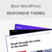 44 Best Responsive WordPress Themes