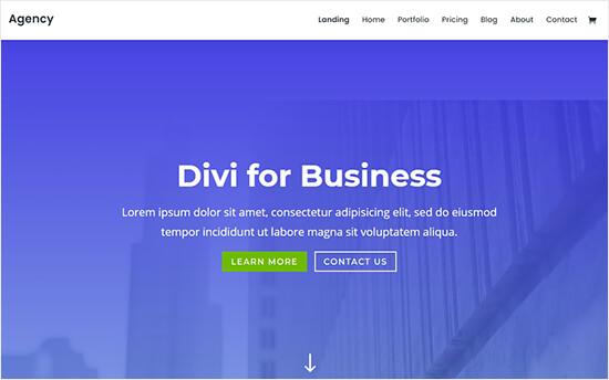 Divi business portfolio theme