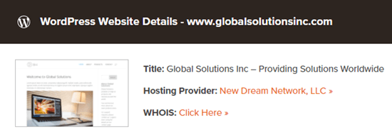 The theme detector results, showing the web host for a website