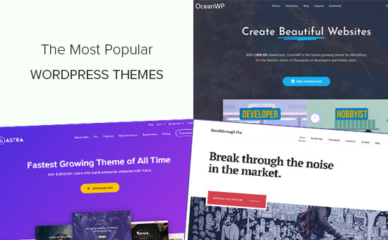 Most popular and best WordPress themes
