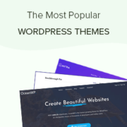 2021's Most Popular and Best WordPress Themes (Expert Pick)