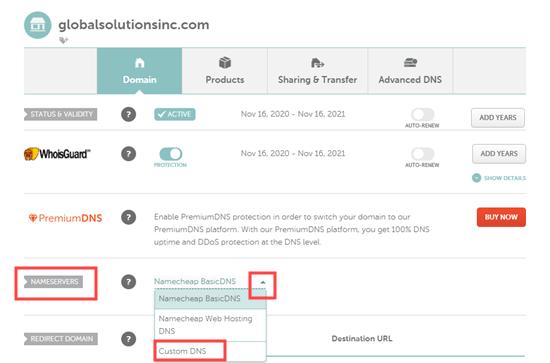 Selecting the Custom DNS option