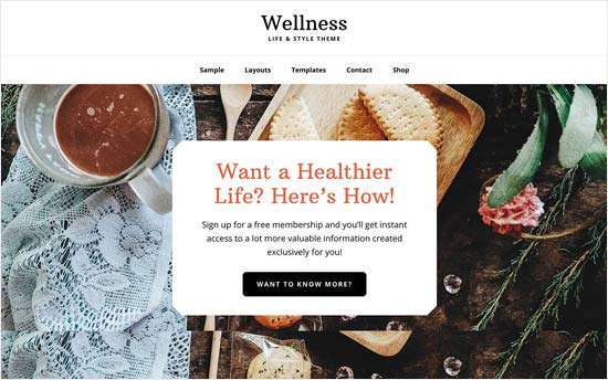 Wellness Pro theme for dentists and medical