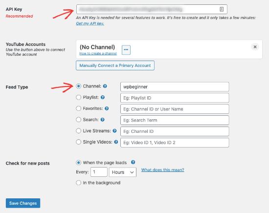Enter API key and feed type in Smash Balloon