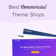 27 Best Commercial WordPress Theme Shops