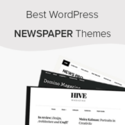 23 Best WordPress Newspaper Themes