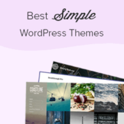41 Best Simple WordPress Themes You Should Try