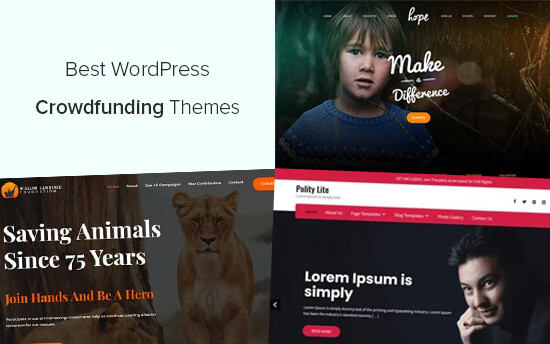 Best WordPress themes for crowdfunding
