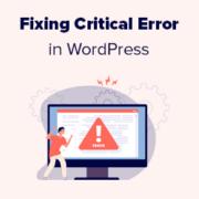 How to Fix the Critical Error in WordPress