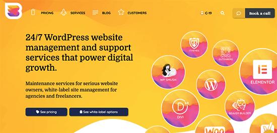 WPBuff WordPress Maintenance Service