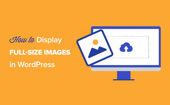 How to show  full-size images successful  WordPress