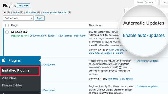 Schakel automatische updates voor WordPress-plug-ins in
