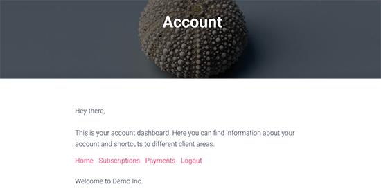 Anteprima della pagina dell'account