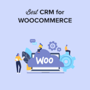 6 Best WooCommerce CRM to Grow Your Store in 2021 (Compared)