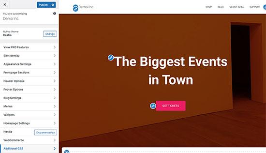 Theme customizer in WordPress