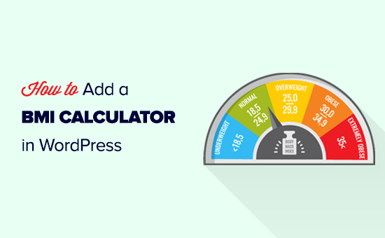 Adding a BMI calculator to your WordPress website