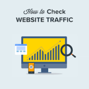 How to Check Website Traffic for Any Site (7 Best Tools)