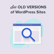 How to See Old Versions of Any WordPress Site (3 Tools)