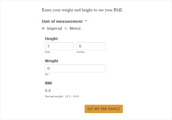 The BMI calculator form with the new styles applied