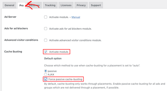 Activate cache busting in Advanced Ads plugin