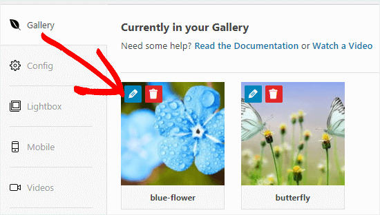 Click the Edit button to edit an image in your gallery