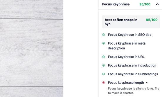 Focus keyword score in All in One SEO