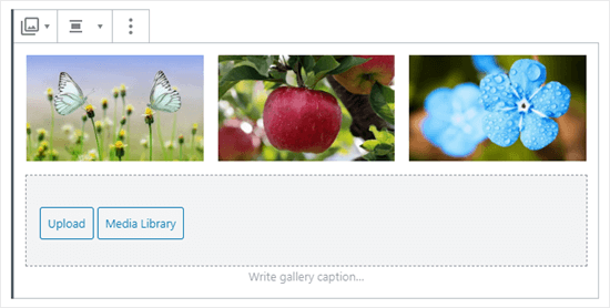 Three images in the gallery (butterflies, apple, and blue flowers)