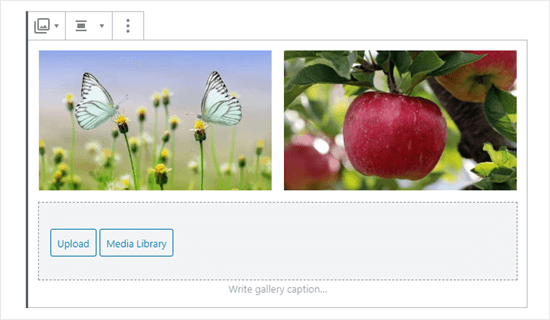 Two images in the gallery (butterflies and apple)