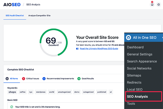 SEO site audit in All in One SEO