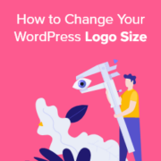 How to Change Your WordPress Logo Size (Works with Any Theme)