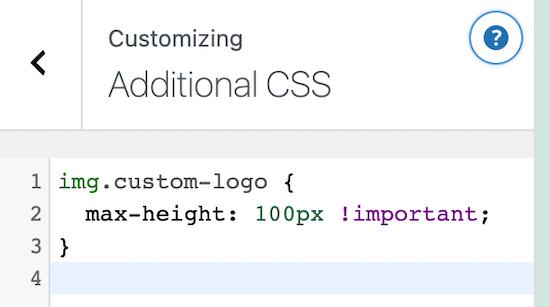 Additional CSS WordPress customizer