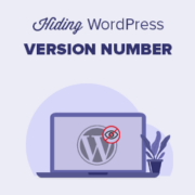 The Right Way to Remove WordPress Version Number