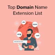 12 Top Domain Name Extension List 2021 (TLDs, gTLDS, ccTLDS)