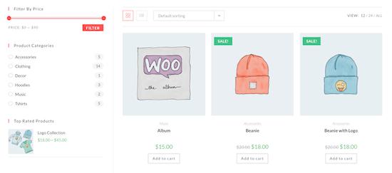 WooCommerce store example