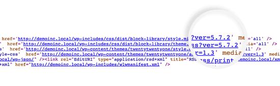 Versione di WordPress mostrata con file CSS e JS