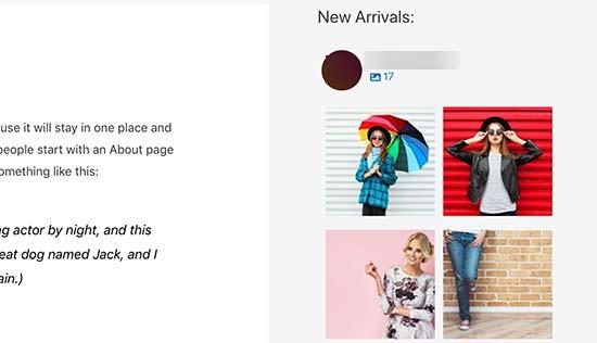 Instagram sidebar widget preview