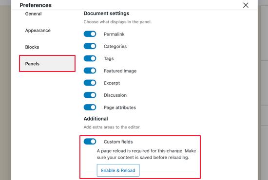 Display Custom Fields in Block Editor