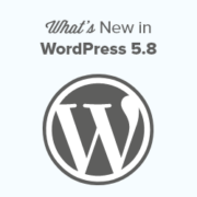What's New in WordPress 5.8 (Features and Screenshots)